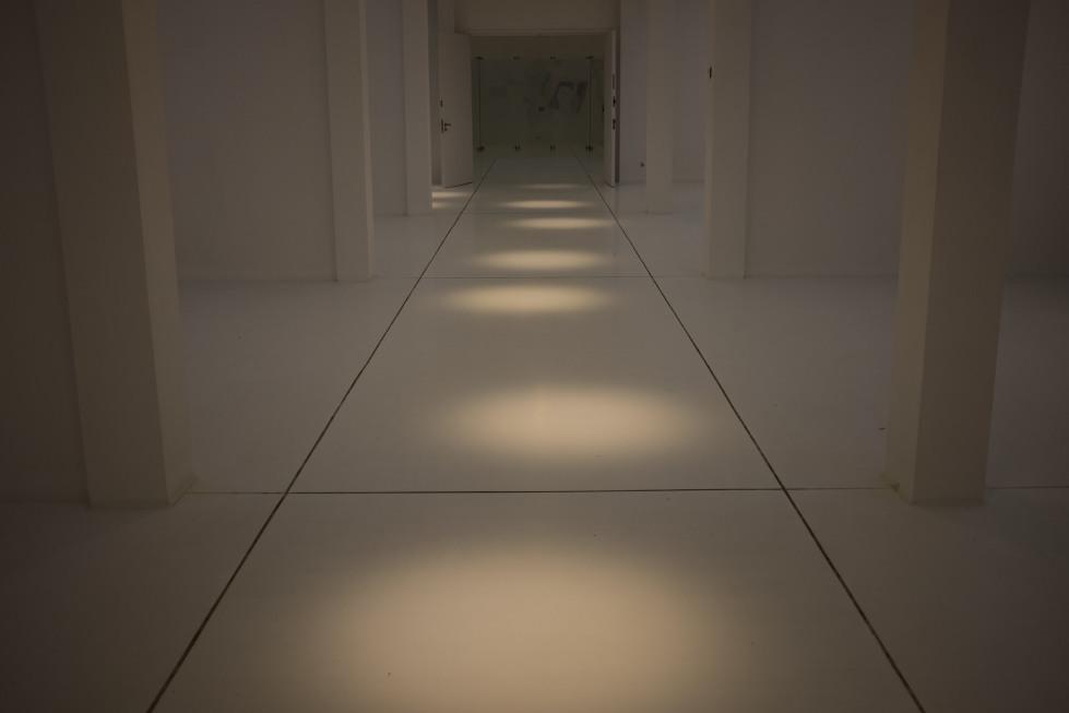 Follow the blotches of light...