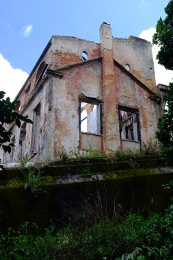 A decaying building at the back of the garden.